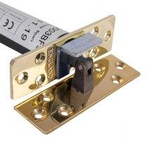 Astra 3003 Concealed Door Closer - Rectangular in Brass