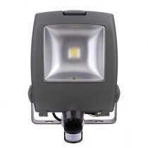 50W LED emergency floodlight with PIR sensor