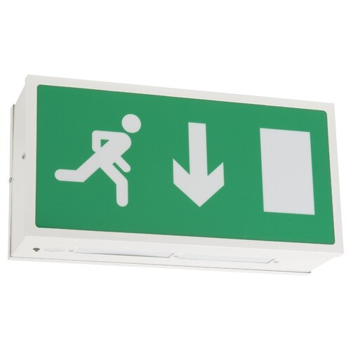Double Sided Ceiling Mounted Fire Exit Sign (Fire Exit Box) with Self-Test - EDS/ST