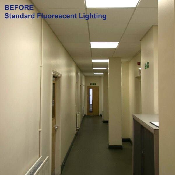 BEFORE: an office corridor with fluorescent lighting installed