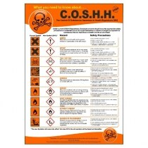 Image of the C.O.S.H.H. Regulations Poster