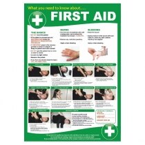 Image of the Workplace First Aid Poster
