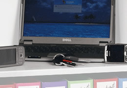 Additional shelves for Phoenix fire and security safes